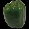 green pepper 100x100